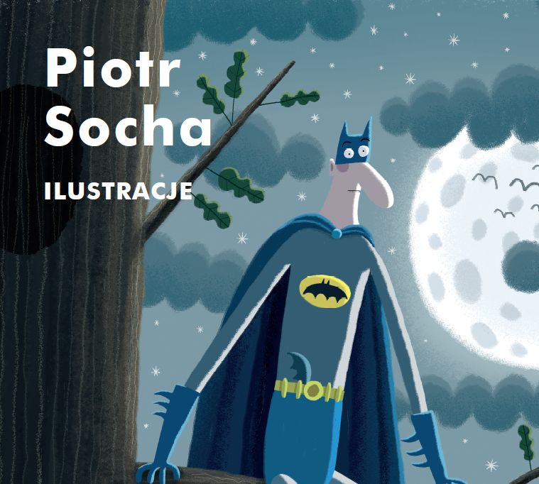 Wystawa Piotra Sochy